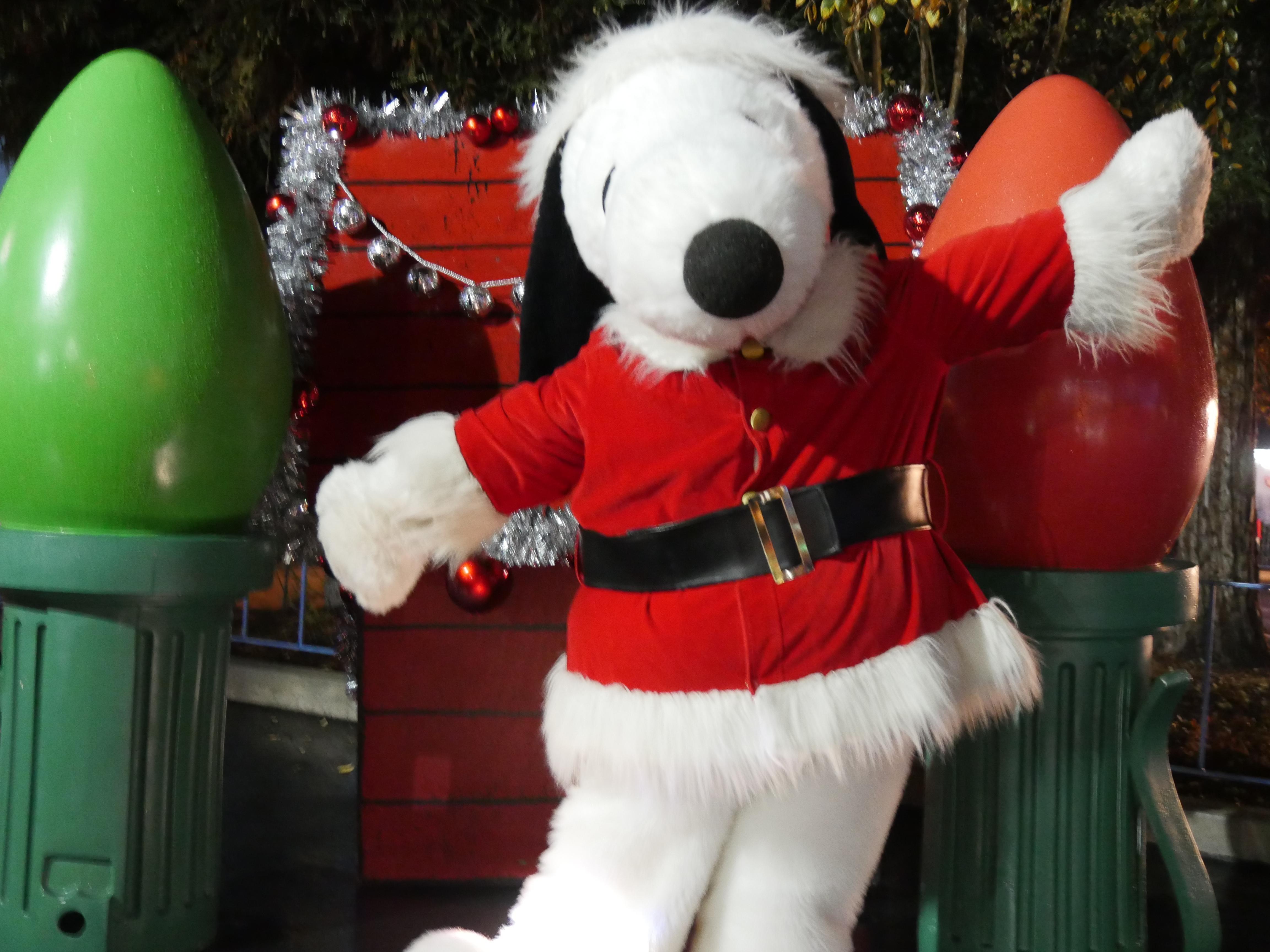 Grand Marshal Information - Dominion Energy Christmas Parade